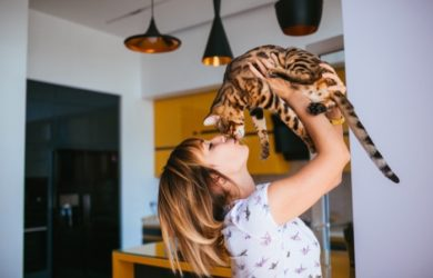 chat dans appartement