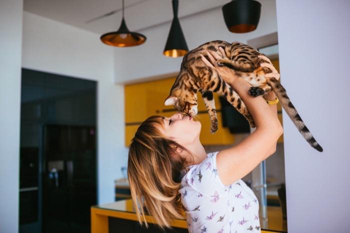 Vivre avec un chat en appartement, que faire ?