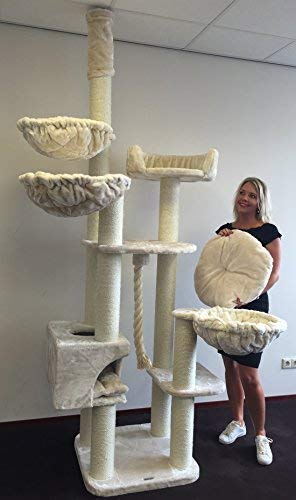 XXL RHRQuality arbre à chat géant