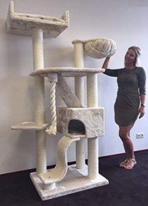 RHRQuality Grand arbre à chat Kilimandjaro